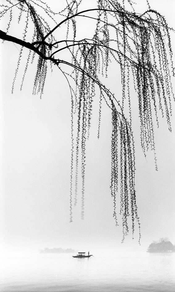 一叶小舟,二三春柳构成了古画卷般的西湖景观.摄于2005年.邵大浪摄图片