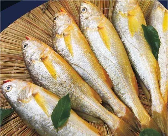 虾和鸡蛋哪个蛋白质高_小龙虾和虾那个蛋白质更高_基围虾蛋白质含量高吗