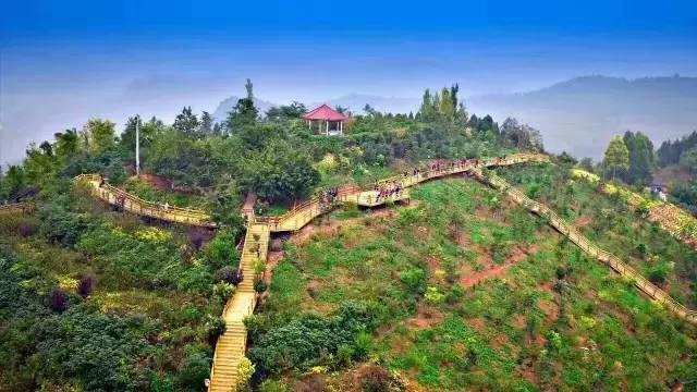 打造龙泉山城市森林公园,金堂以川内首条国家登山健身步道破题!图片
