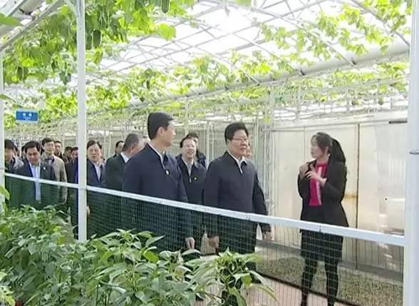 寿光人口碑_寿光蔬菜博览会