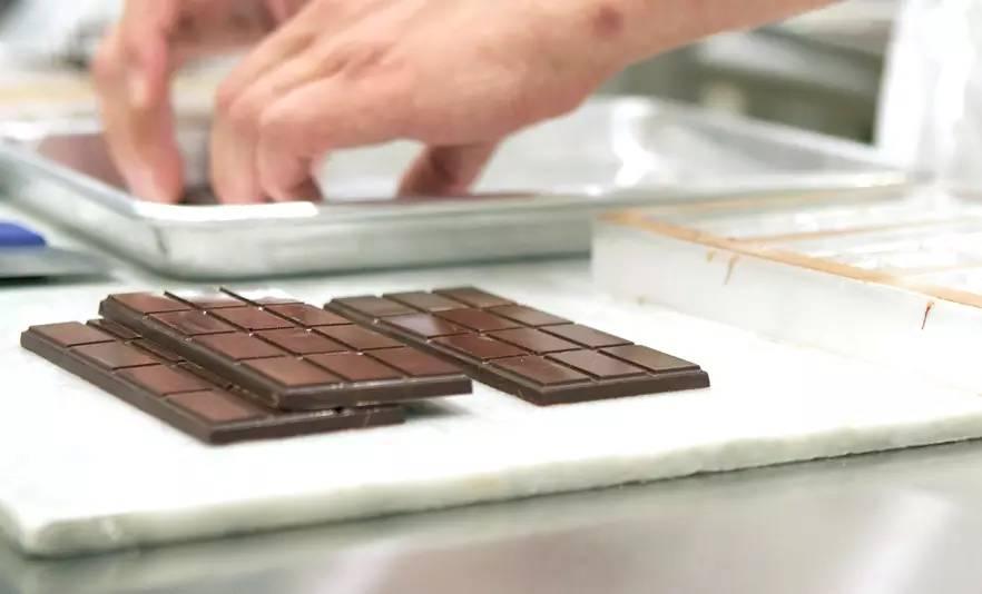 巧克力的产地 - 小狗 - 窝