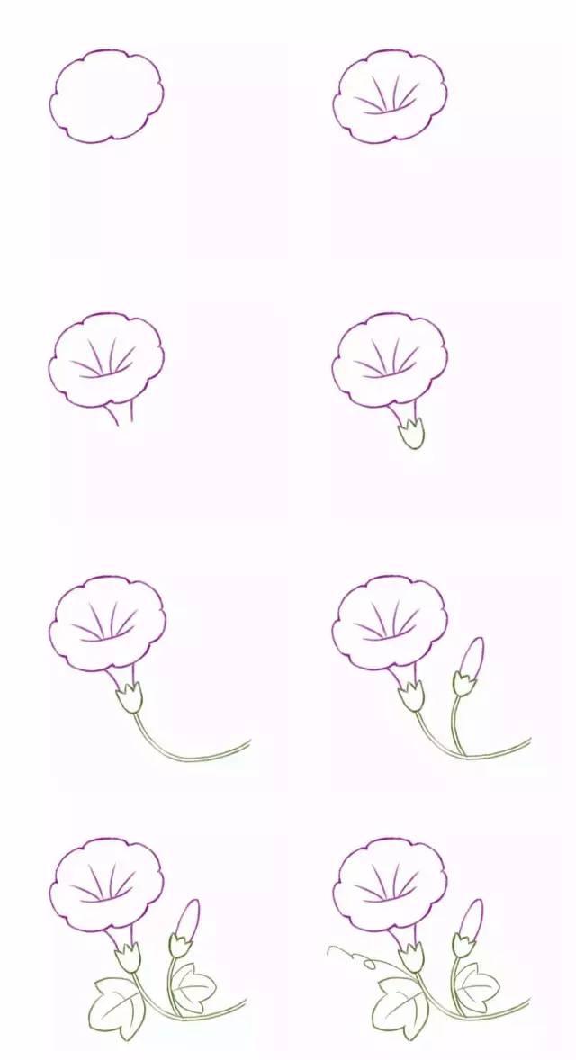 简笔画 常见的花朵画法请收好图片