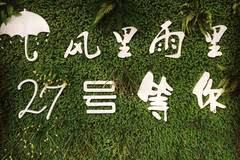 大庆有家仙气十足的森林烤肉,嘎嘎香!吃一桌送一桌,啤酒1元...