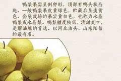 鞍山人切忌!这样的梨千万不要买,买了也千万不要吃!