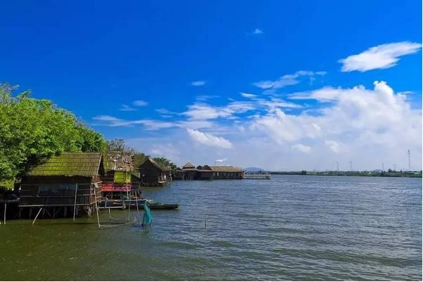 海岛特辑 广州最美海岛,随手一拍就是明信片