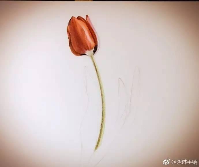送你一朵花