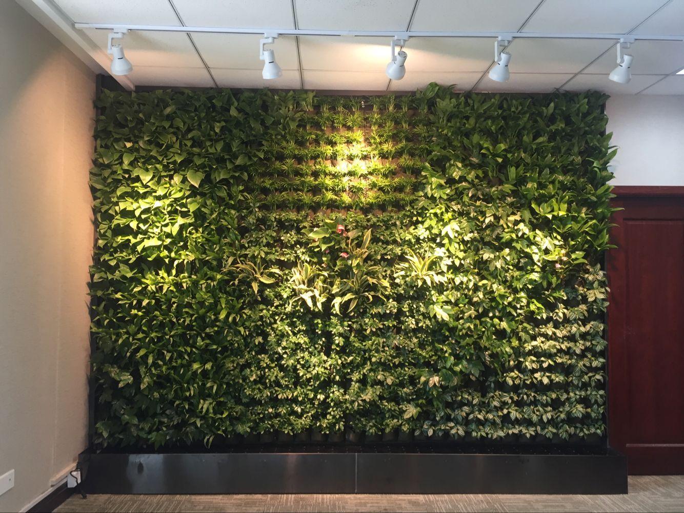 仿真草皮墙装饰图片_广州仿真植物墙_仿真绿植墙价格