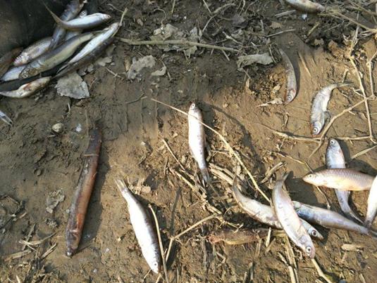 不以爆护为目的的钓鱼都是瞎扯淡!