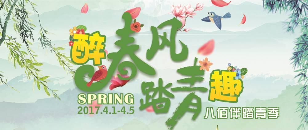 【招募ing】手绘风筝,多肉创意diy,踏青季特别活动报名开始啦