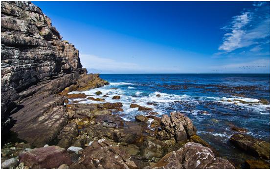 【Q&A】去南非旅游,如何办理南非签证?