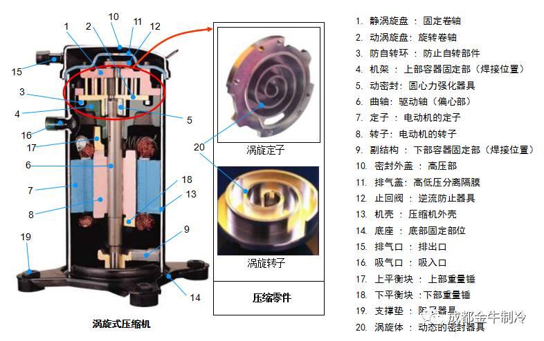 ↓涡旋式制冷压缩机的结构↓