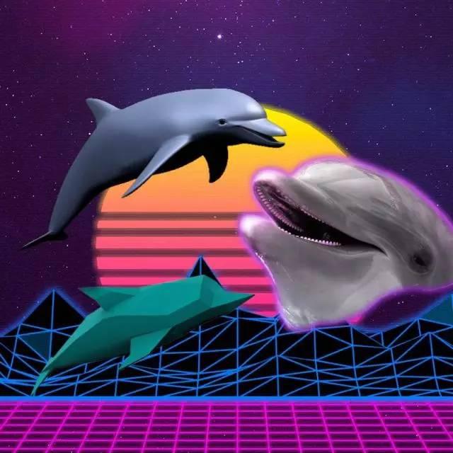 dolphin goggles  dolphin