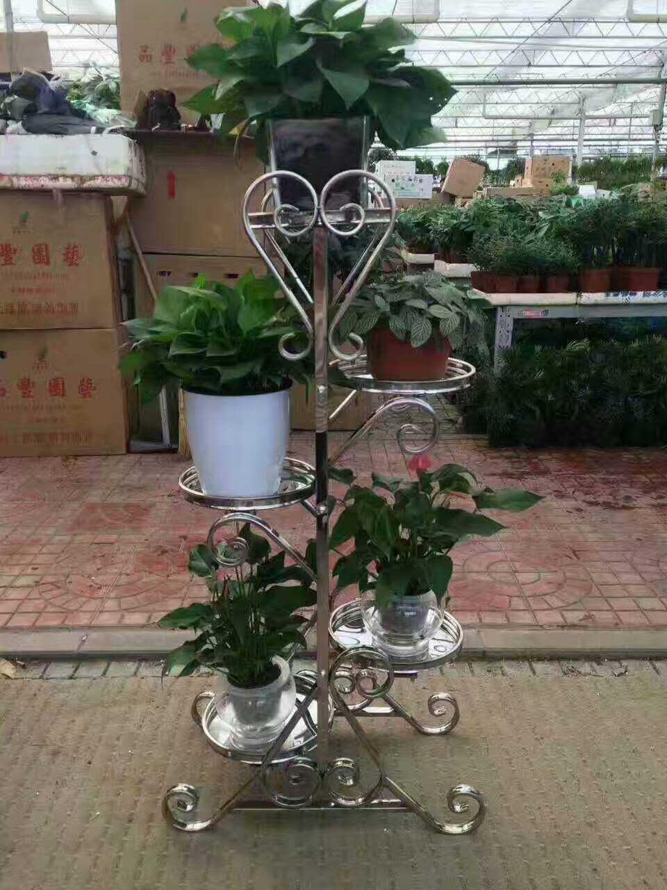 不锈钢管花架您做过吗图片