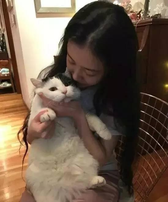 亚洲猫王周杰伦图片