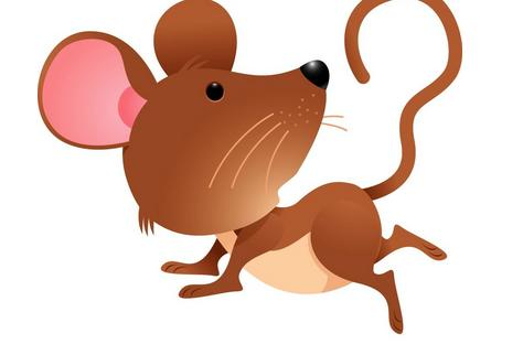 属鼠的和什么属相最配_超准 这两生肖配对婚后越过越富
