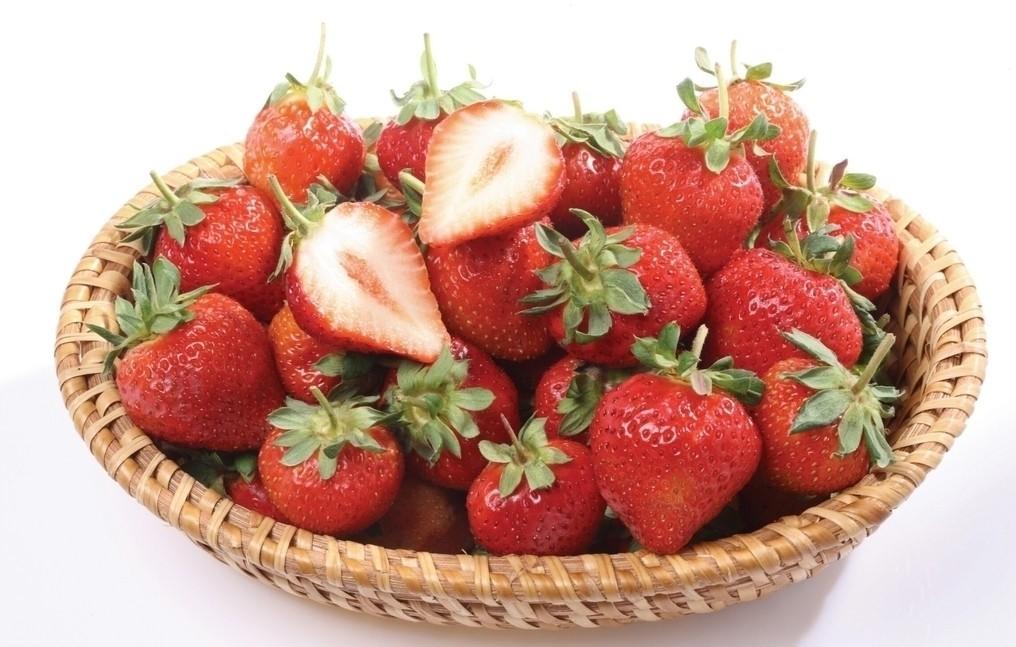 击破草莓无端流言,让您放心吃草莓 - 风帆页页 - 风帆页页博客