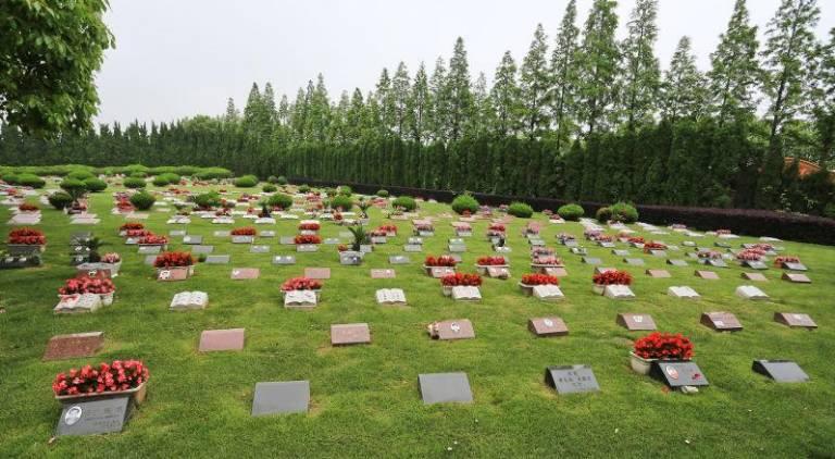 上海福寿园内的草坪葬 廖财明/摄图片