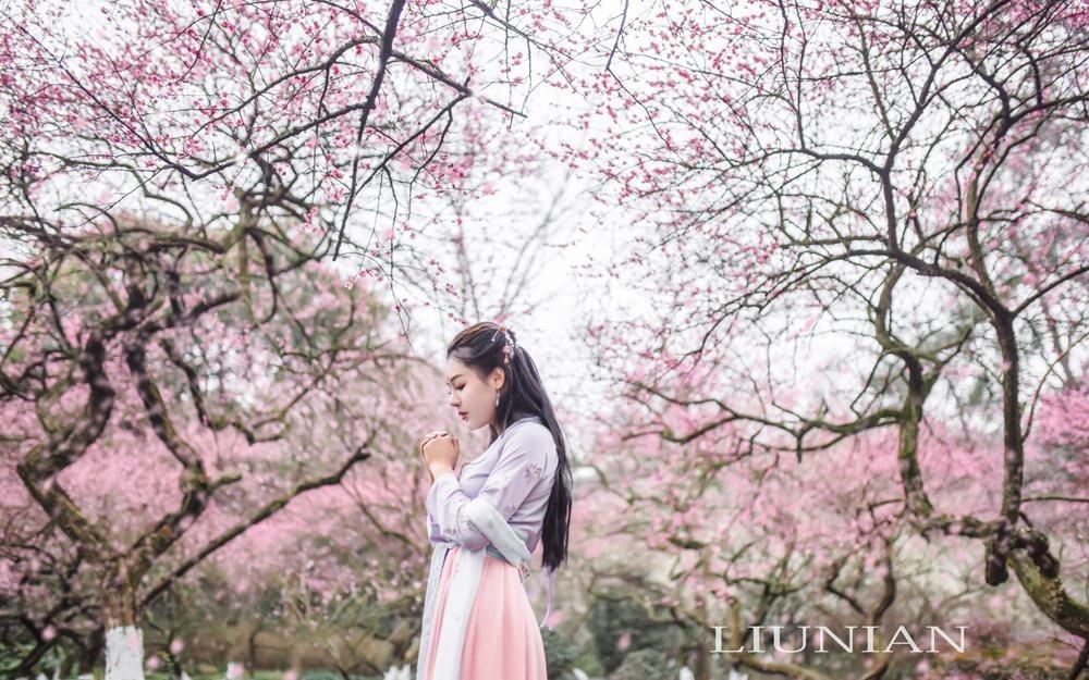 【三生三世十里桃花】流年作品