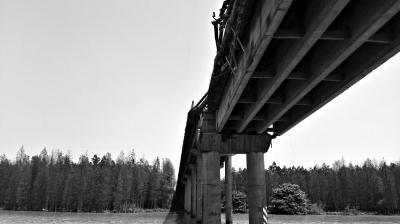 珠海莲溪大桥 被撞移位1.6米(组图)