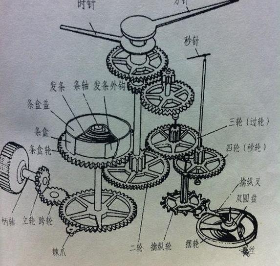 机械手表机芯结构图,全自动机械表结构图