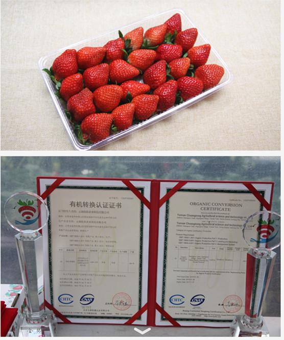 小草莓钩针图解步骤