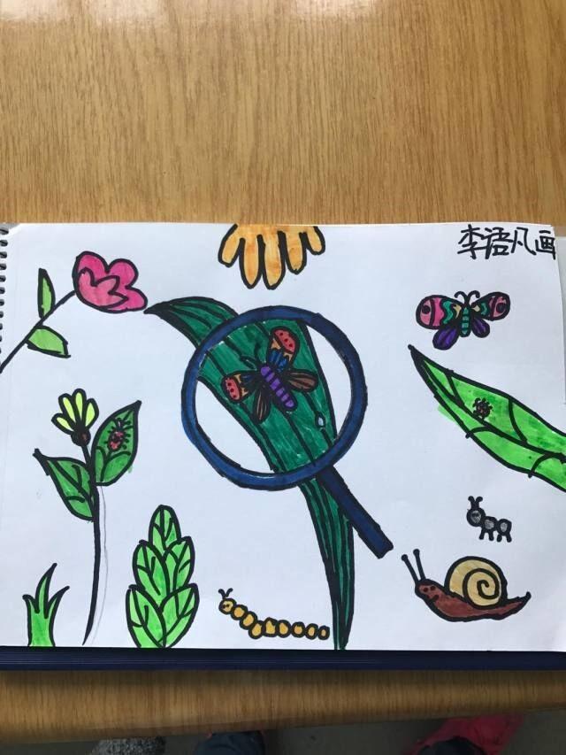 镜下一只美丽的蜗牛,旁边还有一只小蚂蚁,一只小蚂蚁,还有一条毛毛虫黑功效酒的蝴蝶过敏图片