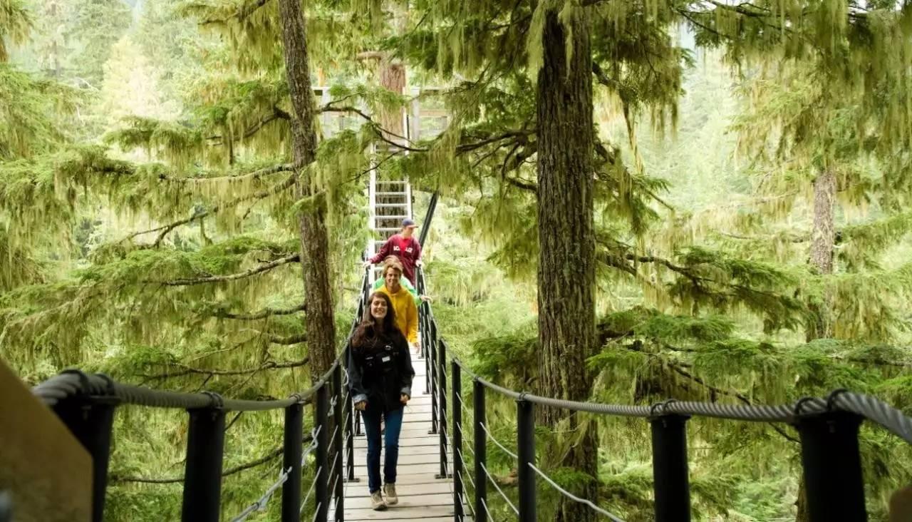 如果是户外运动爱好者,你一定体验过在陆地上穿越森林的感觉,但是你图片