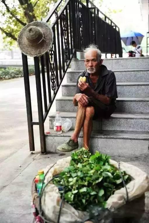 早晨泰安菜市场上发生的一幕,值得每个人深思