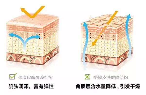 雾霾的危害和预防,雾霾天如何护理皮肤图片