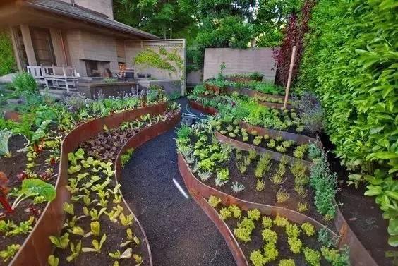 远离尘世繁华,悠然小园种菜