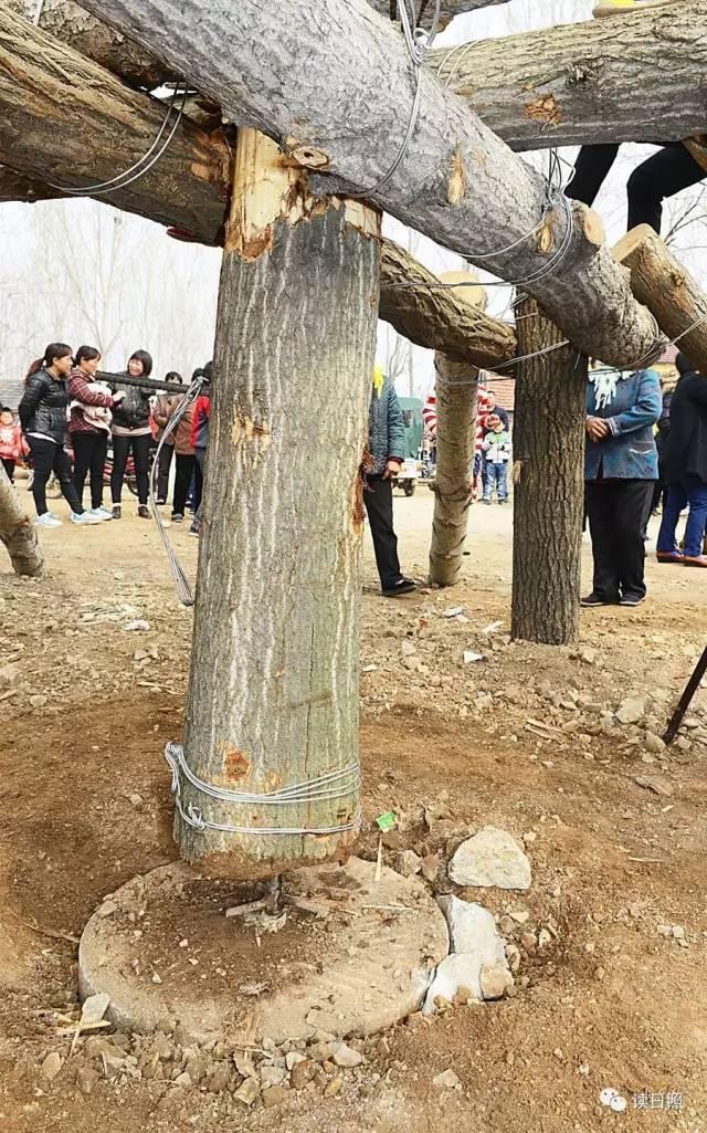 """搭建秋千用木棒,木板,铁丝,绳索,""""牛锁头""""等农村常见物品和农具.图片"""