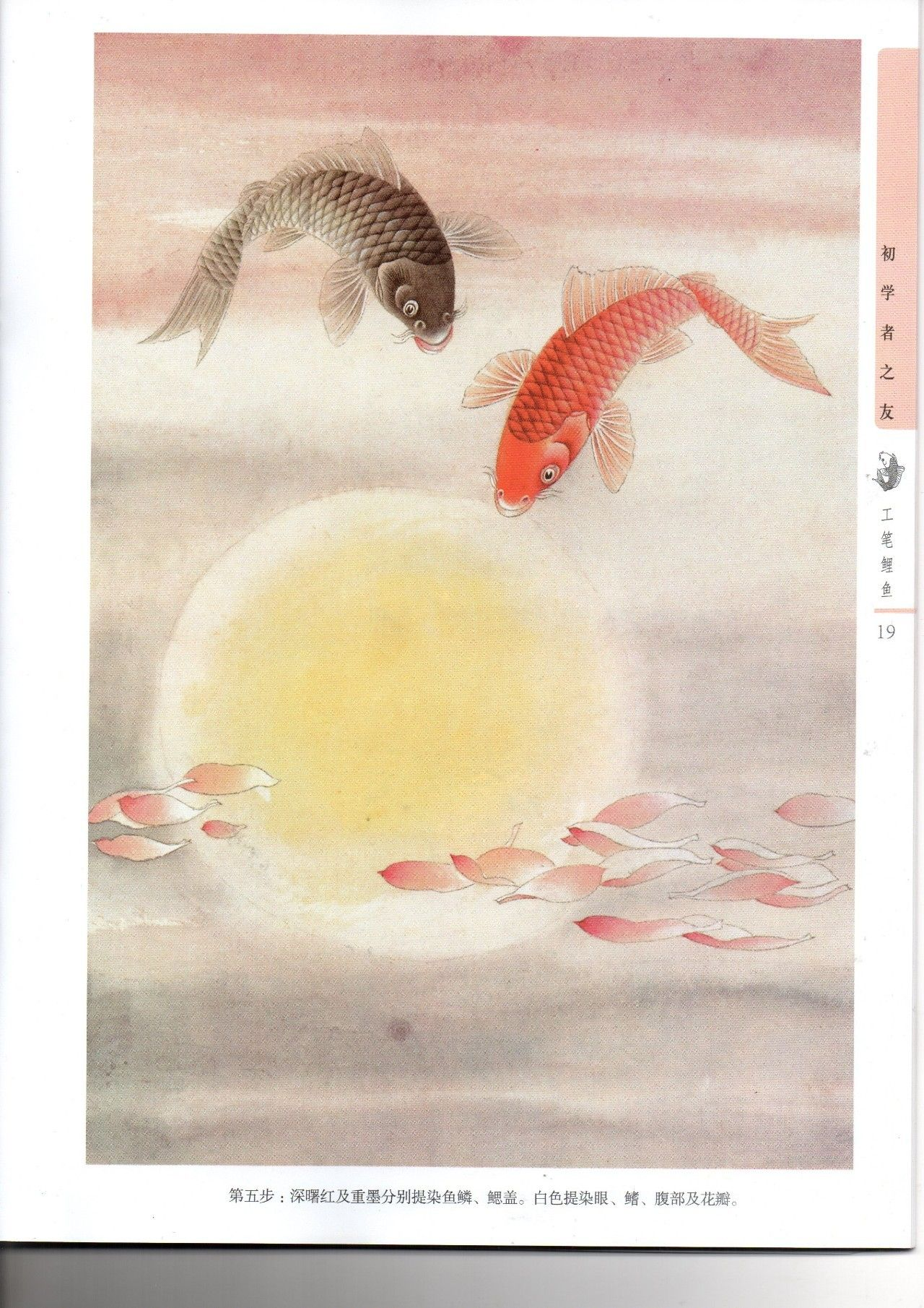 《工笔鲤鱼画法》绘制步骤图片