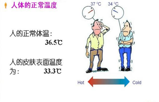 人体温度_人体对热湿环境的反应 人体的温度感受系统 人的皮肤上存在对冷敏感
