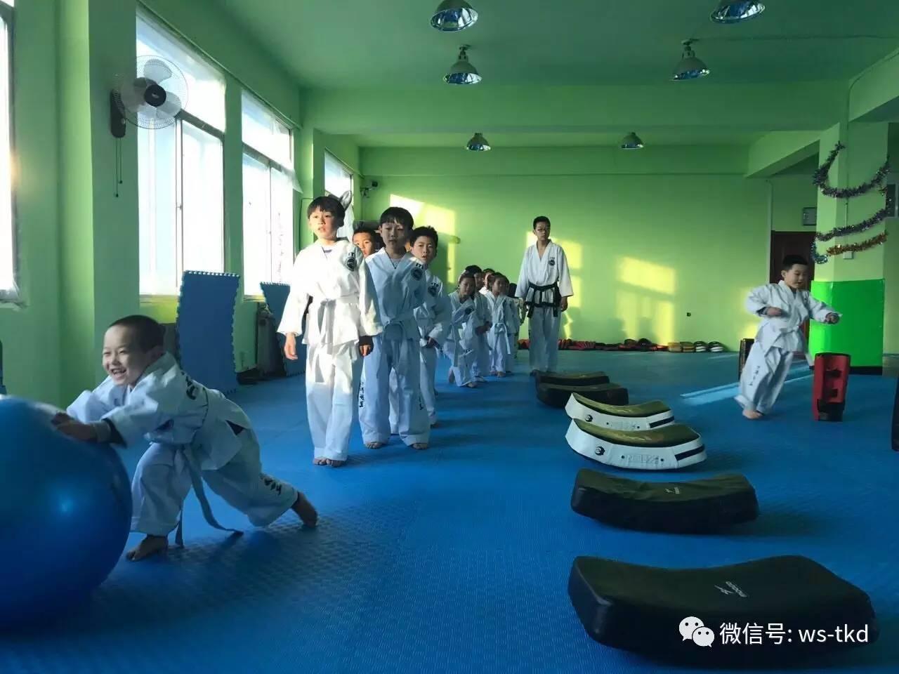 武生俱乐部itf跆拳道,巴西柔术,双截棍,瑜伽火热报名中!图片