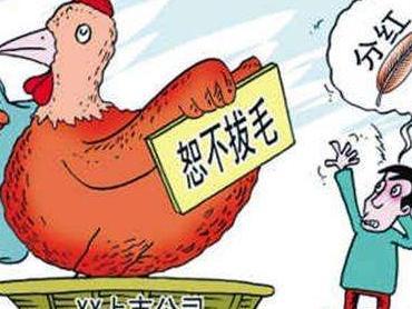 宋清辉:上市公司恒久不分红会发生什么影响?