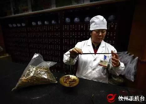 中医创业故事分享