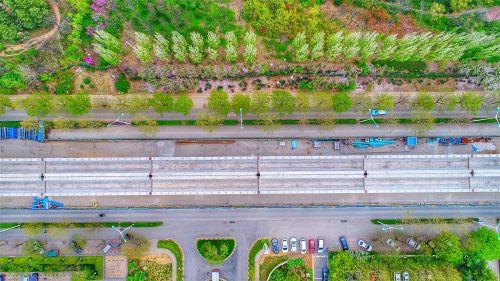 济南地铁R1线在春天的画卷中高空穿行图片