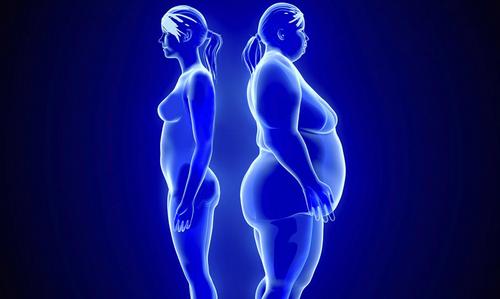 埋线减肥法的原理_埋线减肥的优缺点