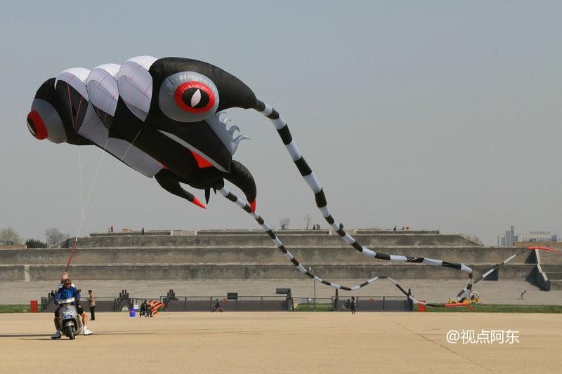 """大明宫风筝节:看老外如何把""""庞然大物""""飞上天 - 视点阿东 - 视点阿东"""