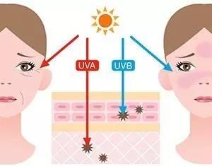 夏季干性皮肤用什么防晒好干性皮肤防晒霜大集结