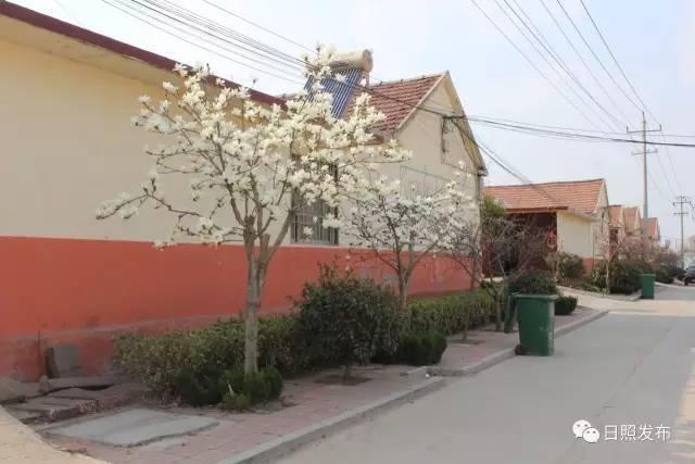 五莲县有多少人口_五莲人,这里的桃子又大又甜又好吃,赶紧约