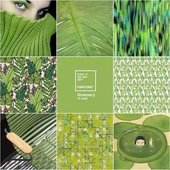 草木绿-2017年十大流行色,美呆了 你知道吗