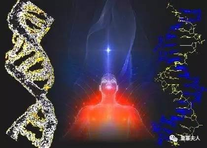 原来基因就是业力图片