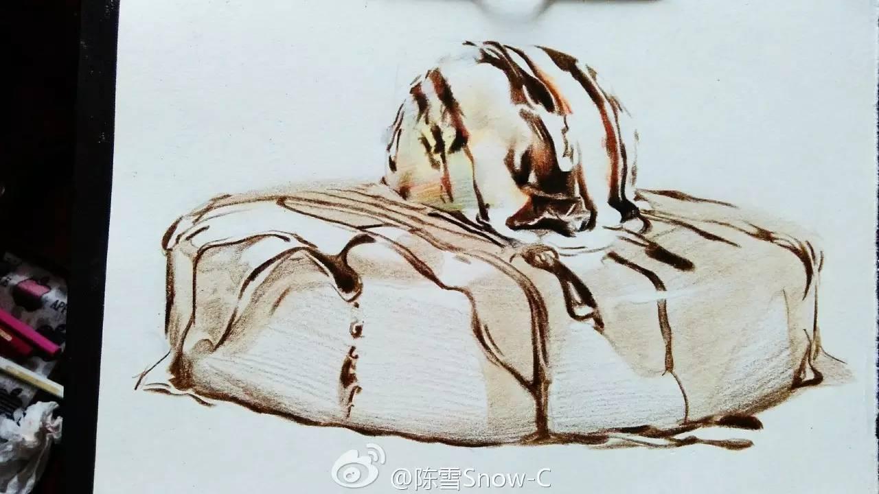 彩铅手绘,美味的巧克力蛋糕