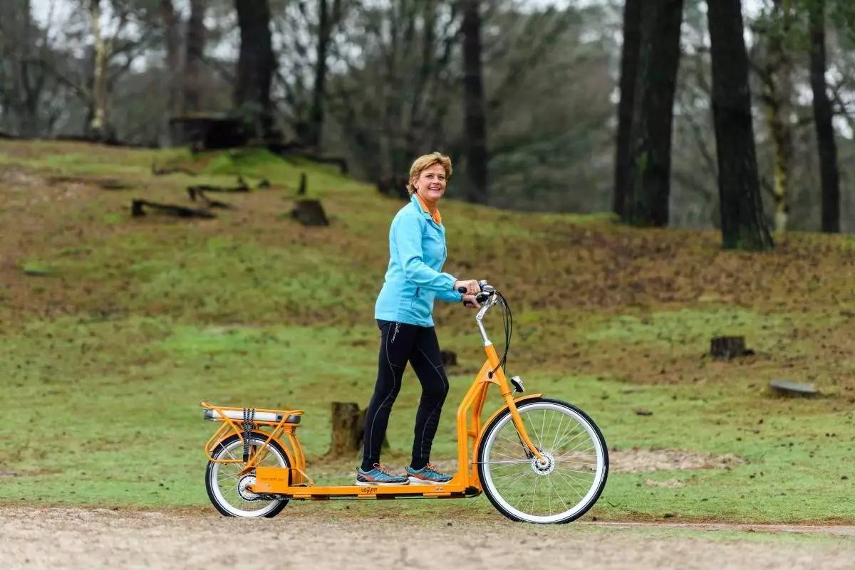 跑步的自行车原理图_无级变速自行车原理图