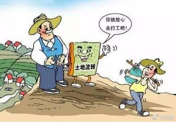 从土地流转土地入股托管,怎样才能降低种地的成本