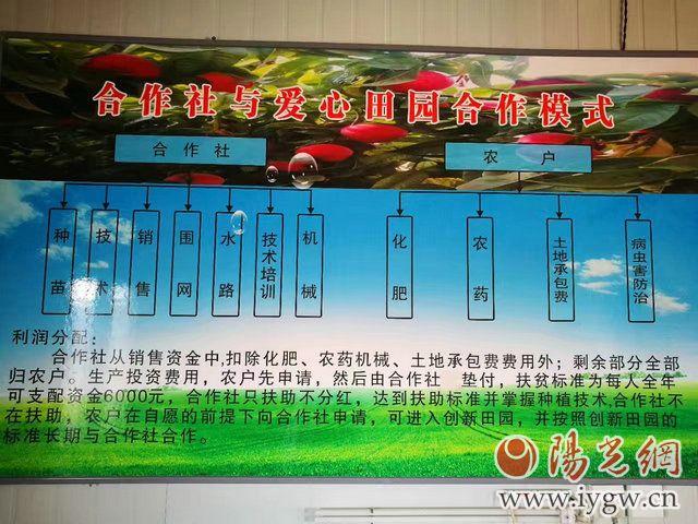 宝鸡陈仓区贾村镇有多少人口_宝鸡北坡公园陈仓区