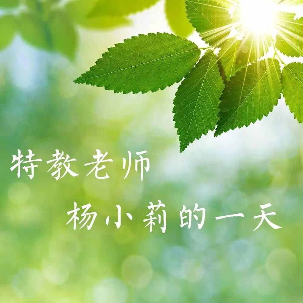 聚焦| 特殊教育老师杨小莉的一天