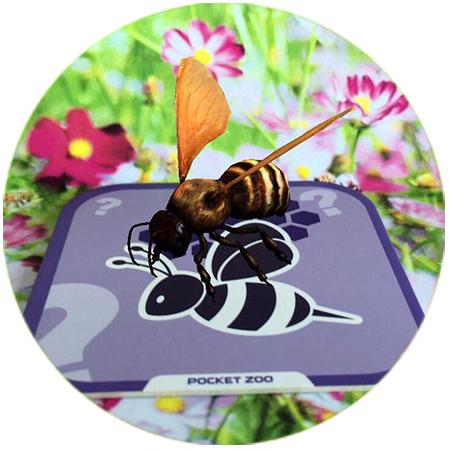 春天到了,小蜜蜂和小蝴蝶一起在花丛中飞舞玩耍.图片
