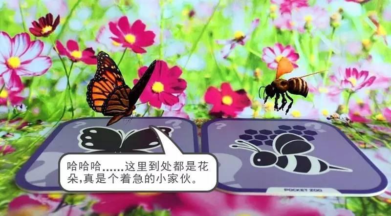 小蜜蜂没有理睬小蝴蝶,自顾自地采蜜去了.图片